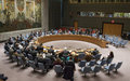 UN Security Council Welcomes Formation of Lebanon Government
